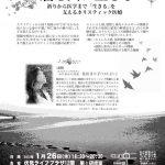 癌と共に生きる,住田まり子,ホリスティック
